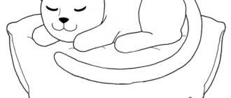 рисунки кошки
