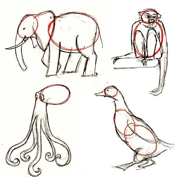 Рисунки животных карандашом
