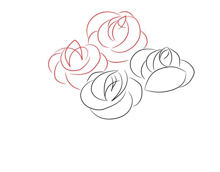 легкие рисунки роза по порядку это единственный секрет