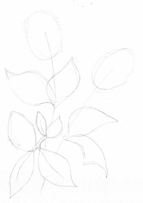 Как нарисовать цветы