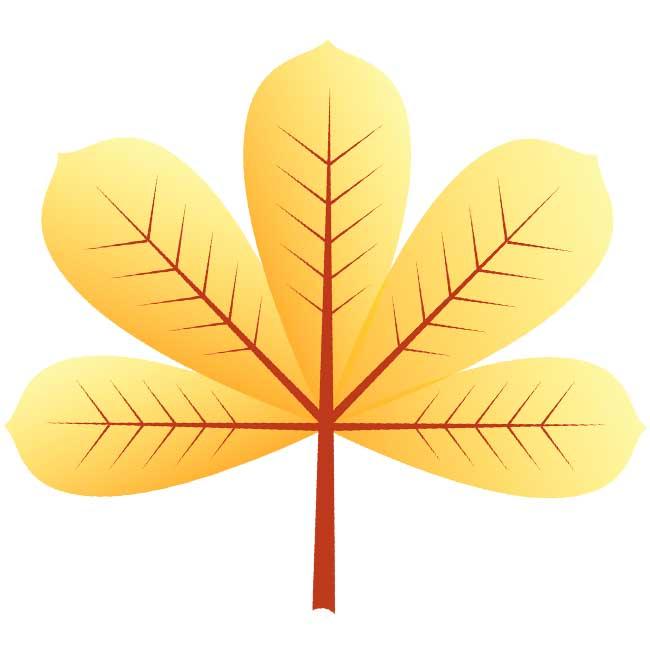 Осенние листья: картинки, шаблоны, трафареты