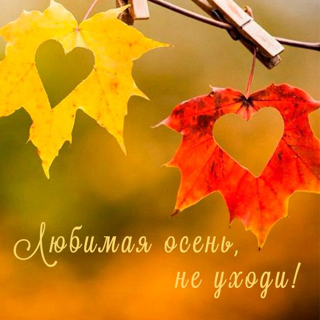 Прощай осень! Картинки