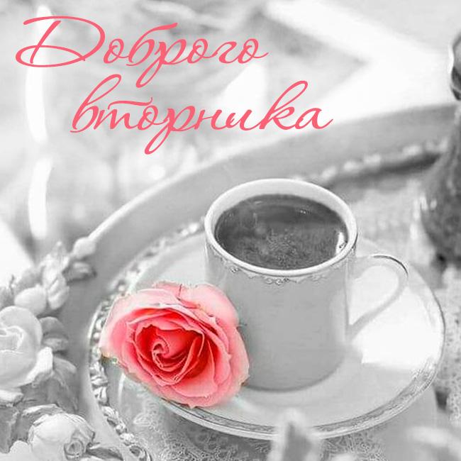 Доброе утро вторника